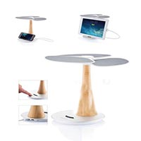 Ginkgo Solar Tree Charger...